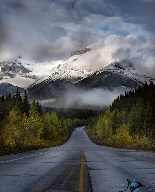 The-Road-Leading-To-The-Canadian-Rockies
