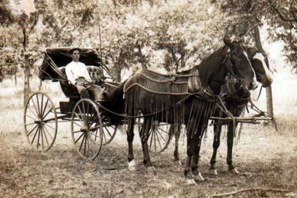 horse_and_buggy_1910-630x420