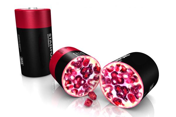 pomegranate_battery_v02