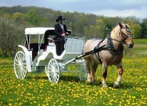 مشهورترین خودروهای منتخب برای عروسی!