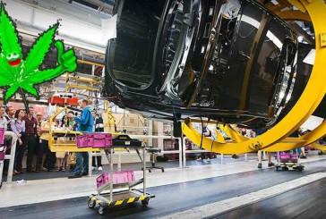کارکنان نعشه و مست بیامو بیش از یک میلیون یورو خسارت به بار آوردند!