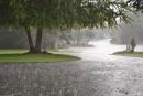 علت به مشام رسیدن بوی خوش بعد از باران چیست؟